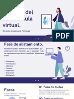 Criterios mínimos uso aula virtual