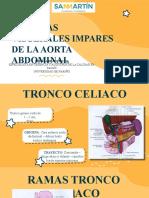 Arterias viscerales impares de la aorta abdominal.pptx