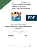 EXCELENCIA SEPARATA PRODUCCION DE PLANTAS MEDICINALES-2020 (1)