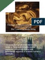 2013_psc._des._resumo_perspectivas_teoricas