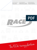 Race_doc_itaeng_low.pdf