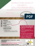 ESTRUCTURA_6_GUIA__5.pptx