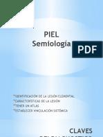 PIEL (3).pptx