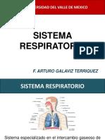 ANATOMIA SISTEMA RESPIRATORIO.pdf