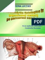 Burnusus - Modificari fiziologice.ppt