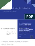 Painel-temático-3-LGPD-Judiciário