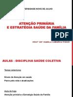 ATENÇÃO PRIMÁRIA.pdf