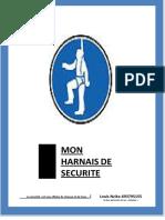 MON HARNAIS DE SECURITE.pdf