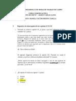 FICHA- 5- TRABAJO DE  CAMPO