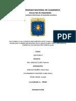 FACTORES O LAS CONDICIONES IMPORTANTES, PARA LA ESTABILIDAD DE UN PILOTE Y GRUPO DE PILOTES