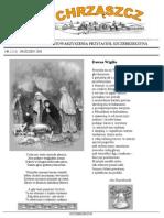 Chrząszcz - Grudzień 2008 (nr 33)