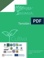 Fenómeno_Tensión_didáctica