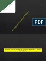 Plantas-bioindicadoras del suelo.pptx