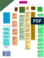 mapa conceptual ciencias del deporte