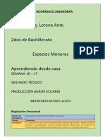 2° ESPECIES SEMANA.docx