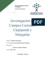 Campos margarita, carrasco y caipipendi