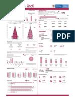 Infografia Censo San Luis 2019