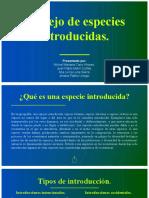 Manejo de especies introducidas CMLP