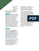 4.HORMONAS Y CICLOS.docx