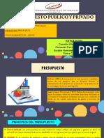 DIAPOSITIVAS PRESUPUESTO PUBLICO Y PRIVADO - PRESUPUESTO VIII - 202002.