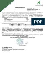 AE2019CON_Def.pdf