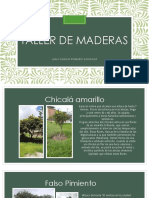 Taller de maderas.pdf