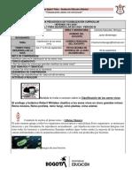 guias 7b.pdf