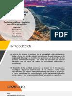 2. Depósitos Metálicos y Metalíferos en Pórfidos