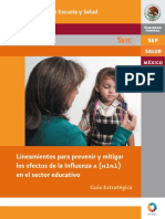 LinInfluenza.pdf