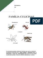 parasitologia FAMÍLIA CULICINAE.docx