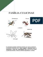 parasitologia FAMÍLIA CULICINAE