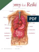 Anatomy for Reiki