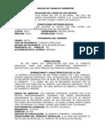 HECHOS DE TRANSITO TERRESTRE sebas[1]
