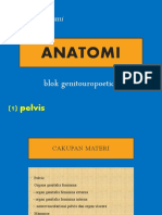 [3]-Anatomi_Pelvis-dr. Selfi Handayani