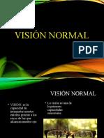 Partes-y-funciones-del-ojo