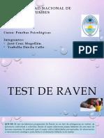 Test de Raven Exposicion