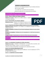 plan programme TD