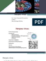 HEPATITISHERPES