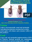 Fruit fly Ahsan
