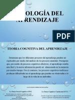 PSICOLOGÍA DEL APRENDIZAJE II