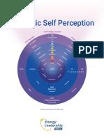 Energetic-Self-Perception.pdf