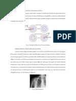 Principios de absorción y emisión atómica.pdf