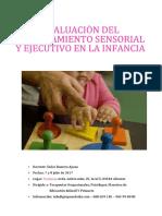 PROG_CURSO_EVALUACION_PROCESAMIENTO_SENSORIAL_Y_EJECUTIVO_INFANCIA