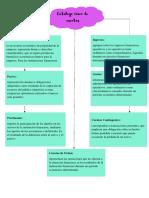 organizador gráfico sobre el catálogo unico de cuentas