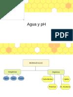 Agua y pH 6SEM