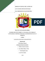 Informe Práctico Sobre La Natalidad, Fecundidad y Nupcialidad de Las Regiones de Tacna y Arequipa