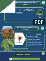 BIOLOGIA REPRODUCTIVA BALSO BLANCO.pptx