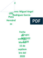 RodriguezGarcia_MiguelAngel_M03S2AI3