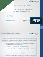19-IPM_Reservorios tight y convencional_PAMPA_0.pdf