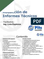 125125541-1-Informe-Tecnico-Livia-Espinoza
